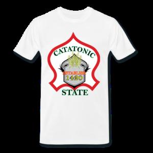 catatonic state